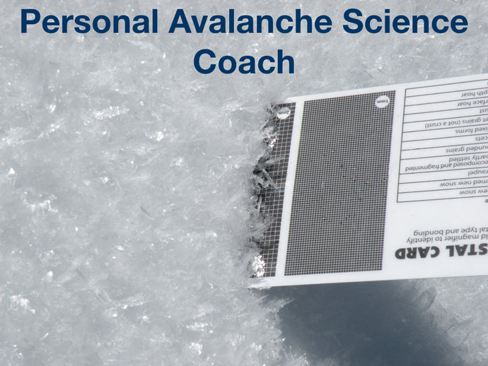 2-Day Personal Avalanche Coach at Mores Creek Summit