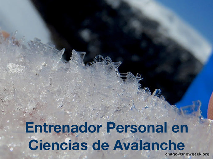 2-Day Personal Avalanche Science Coach - Chile