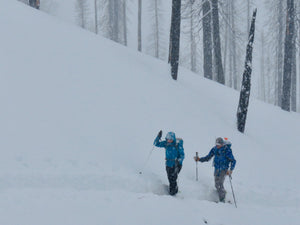 Avalanche Level 1/Level2 - BOOK your own group of 4, select 3 days during 2018-2019 Winter