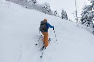 Private REC1+/REC2+ Avalanche Course