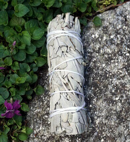 White Sage Stick - 90 Days From Now Manifestation Planner