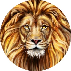 King of the Jungle - Lion