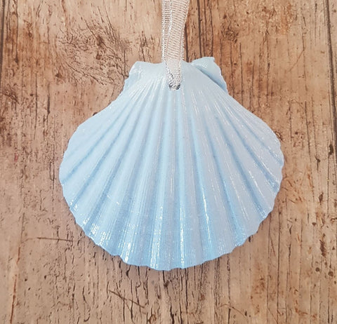 Pastel Mid Blue Scallop Shell