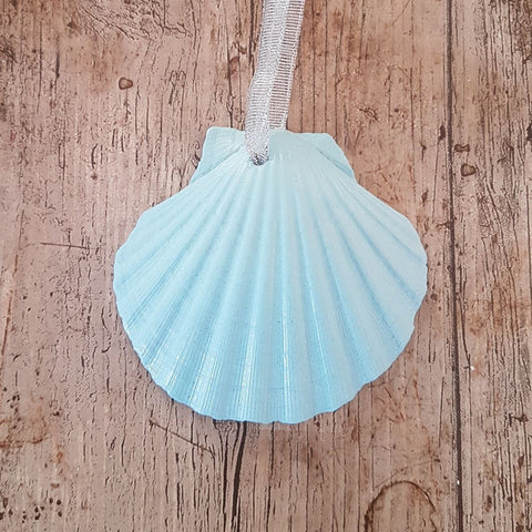 Pastel Light Blue Scallop Shell