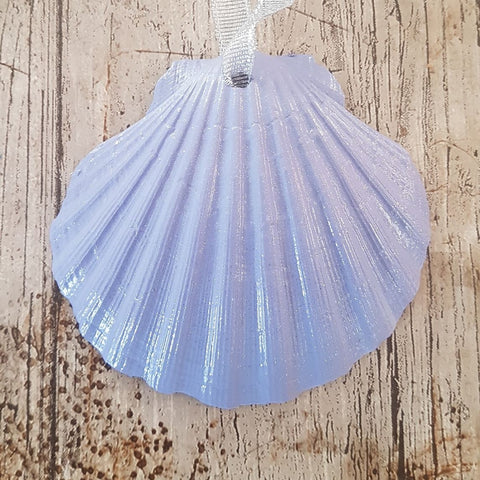 Pastel Purple Scallop Shell