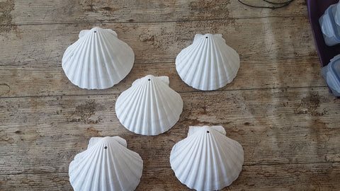 Drilled and Primed Scallop Shell 14cm