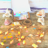 Sea Shell Fairy Light Craft Box