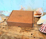 Scallop Shell Craft Box FLOWERS