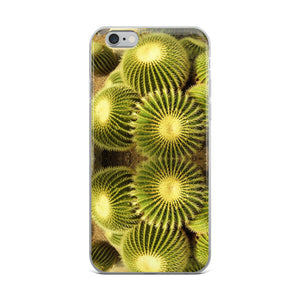 Cactus iPhone Case - Roseandjoy