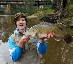 Mansfield Hunting & Fishing - Fishing Supplies - Mansfield Young Anglers