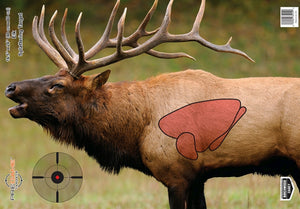 BIRCHWOOD CASEY PREGAME TARGETS ELK -  - Mansfield Hunting & Fishing - Products to prepare for Corona Virus