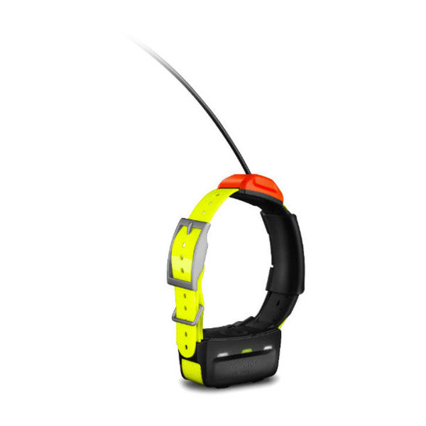 Garmin T5 GPS Tracking Collar -  - Mansfield Hunting & Fishing - Products to prepare for Corona Virus