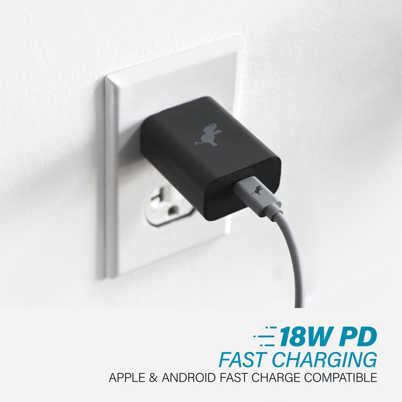 iPhone 12 Disc Case & Wall Charger Kit
