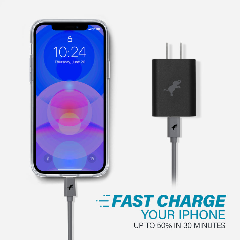 iPhone 12 Pro Max Disc Case & Wall Charger Kit