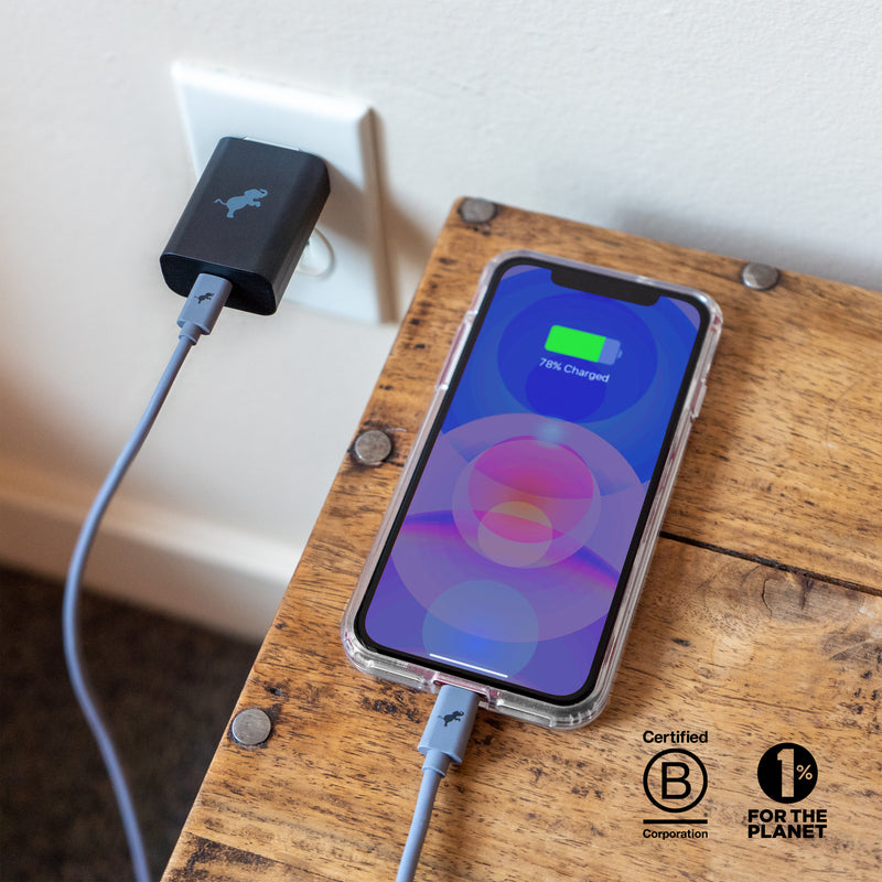 iPhone 12 Pro Disc Case & Wall Charger Kit