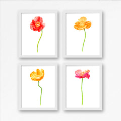 Poppy Pink Art Print - Floral Art Wall Decor Collection-Di Lewis