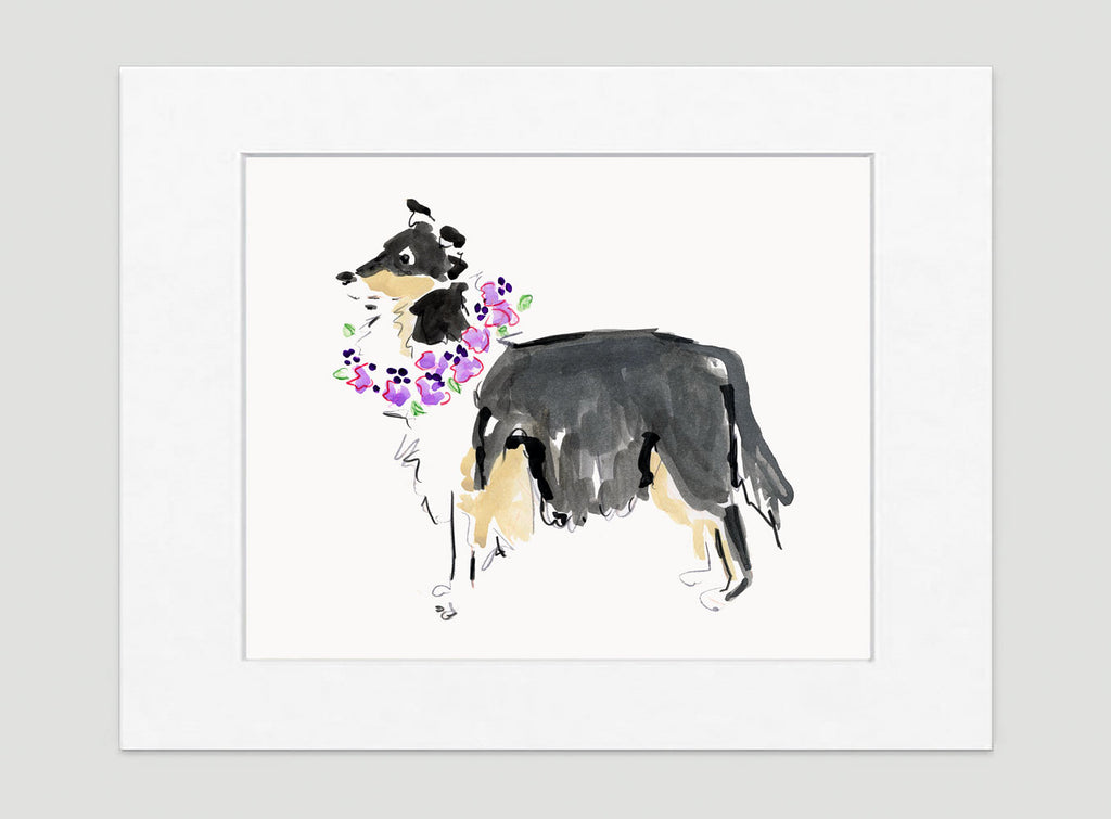Cleo Collie Art Print