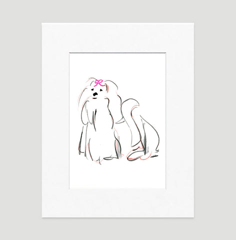 Missy Maltese Art Print - Dog Illustrations Wall Art Collection-Di Lewis