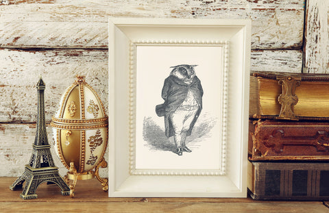 The Distinguished Owl Art Print