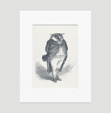The Distinguished Owl Art Print - Animal Illustrations Wall Art Collection-Matted-Di Lewis