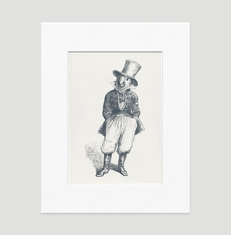 The General Art Print - Animal Illustrations Wall Art Collection-Matted-Di Lewis
