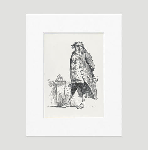 The Honorable Falcon Art Print - Animal Illustrations Wall Art Collection-Matted-Di Lewis