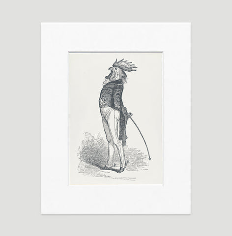 The Proud Cock Art Print - Animal Illustrations Wall Art Collection-Matted-Di Lewis