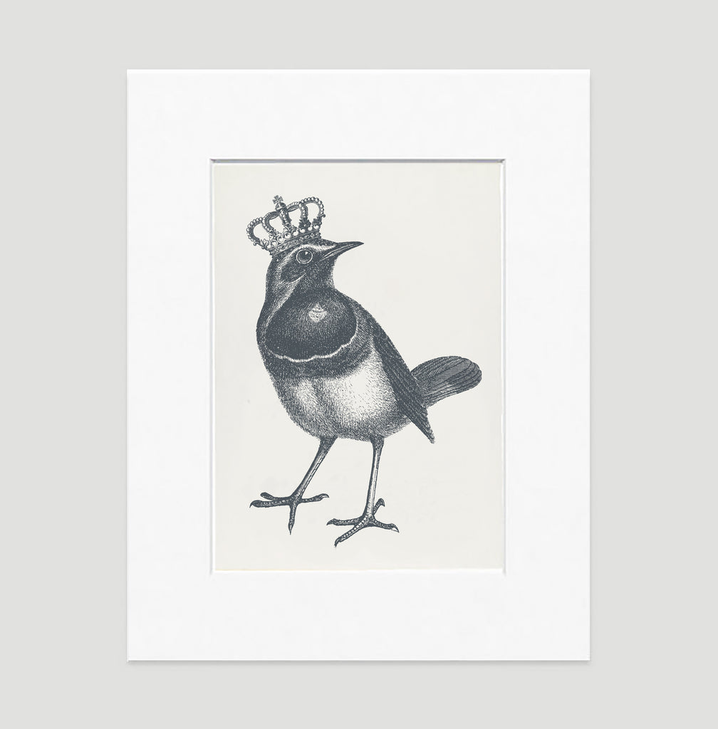 The Royal Robin Illustration Art Print Di Lewis Living Room Wall Decor