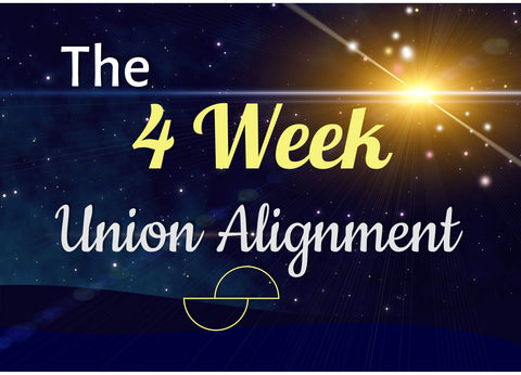 The 4 Week Union Alignment Program