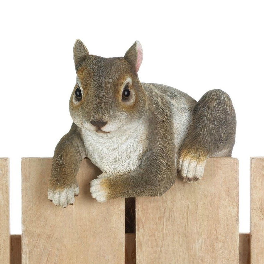 Climbing Cutie - Chip the Squirrel