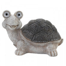 Turtle with Solar Eyes
