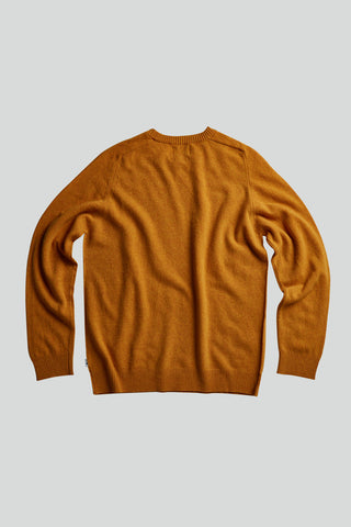 NN07 Edward Knit yellow