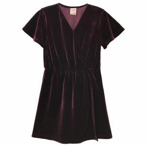FOR ALL SEASONS Girls Velvet VNeck Dress