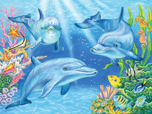DOLPHIN COVE JIGSAW PUZZLE