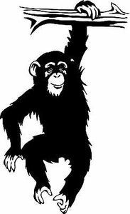 "Chimp Monkey Chimpanzee Ape Animal Wall Decor Mural Vinyl Decal                - 18"" x 30"""