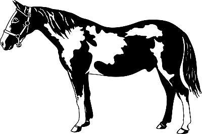 "Paint Horse Equine Animal Western Rodeo Car Truck Window Vinyl Decal Sticker - 10"" Long Edge"