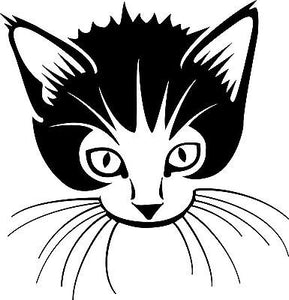 Cat Kitten Pet Animal Car Truck Window Wall Laptop Vinyl Decal Sticker - 9""