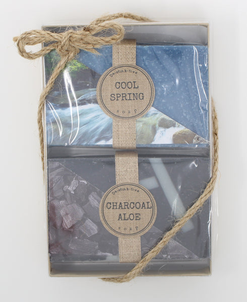 2-Pack: Cool Spring & Charcoal Aloe bar soap