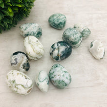 "Tree Agate ""The Plant Lady"" Stone Tumbler"