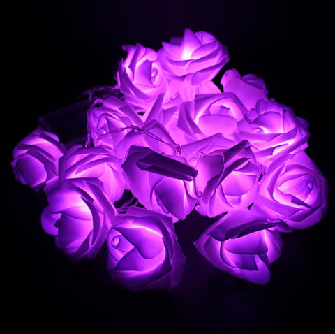 SXZM 2meter 20 x LED Novelty Rose Flower Fairy String Fashion Hol