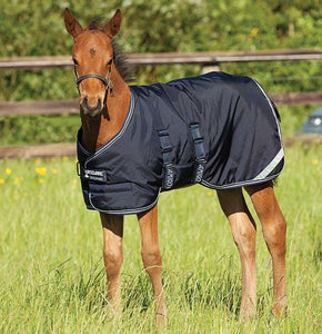 Amigo Foal Rug Medium 200g