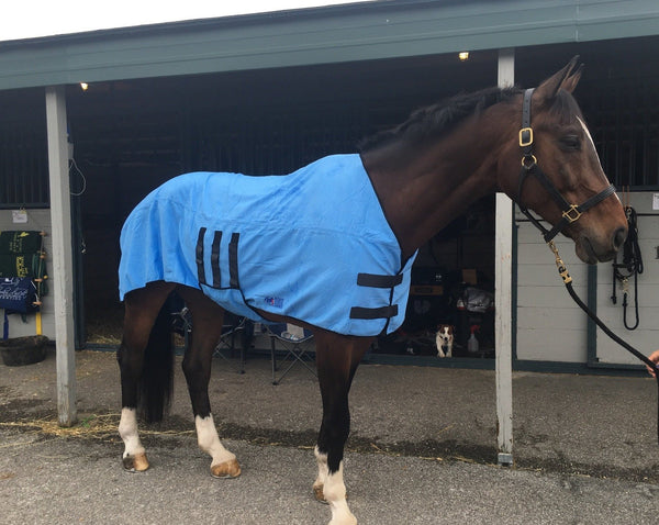 Equi Cool Down DeLuxe Body Wrap