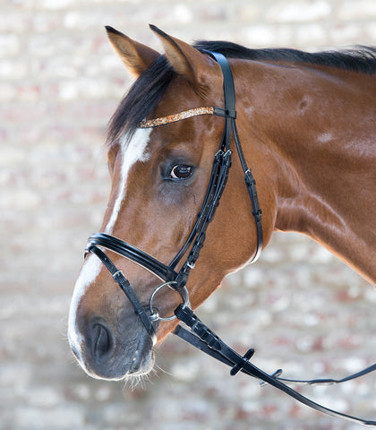 Lovely STAR Bridle