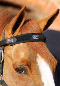 Magni-Teque Magnetic Browband