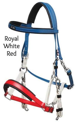 Multi Colour Marathon Bridle