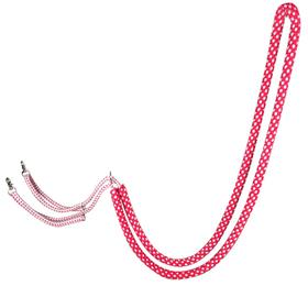 Rope Lunging Aid
