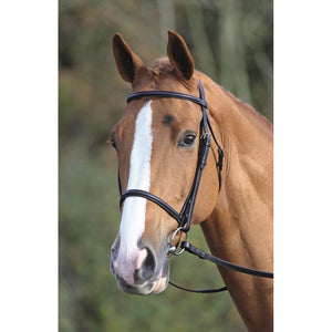 Aviemore Raised Cavesson Bridle