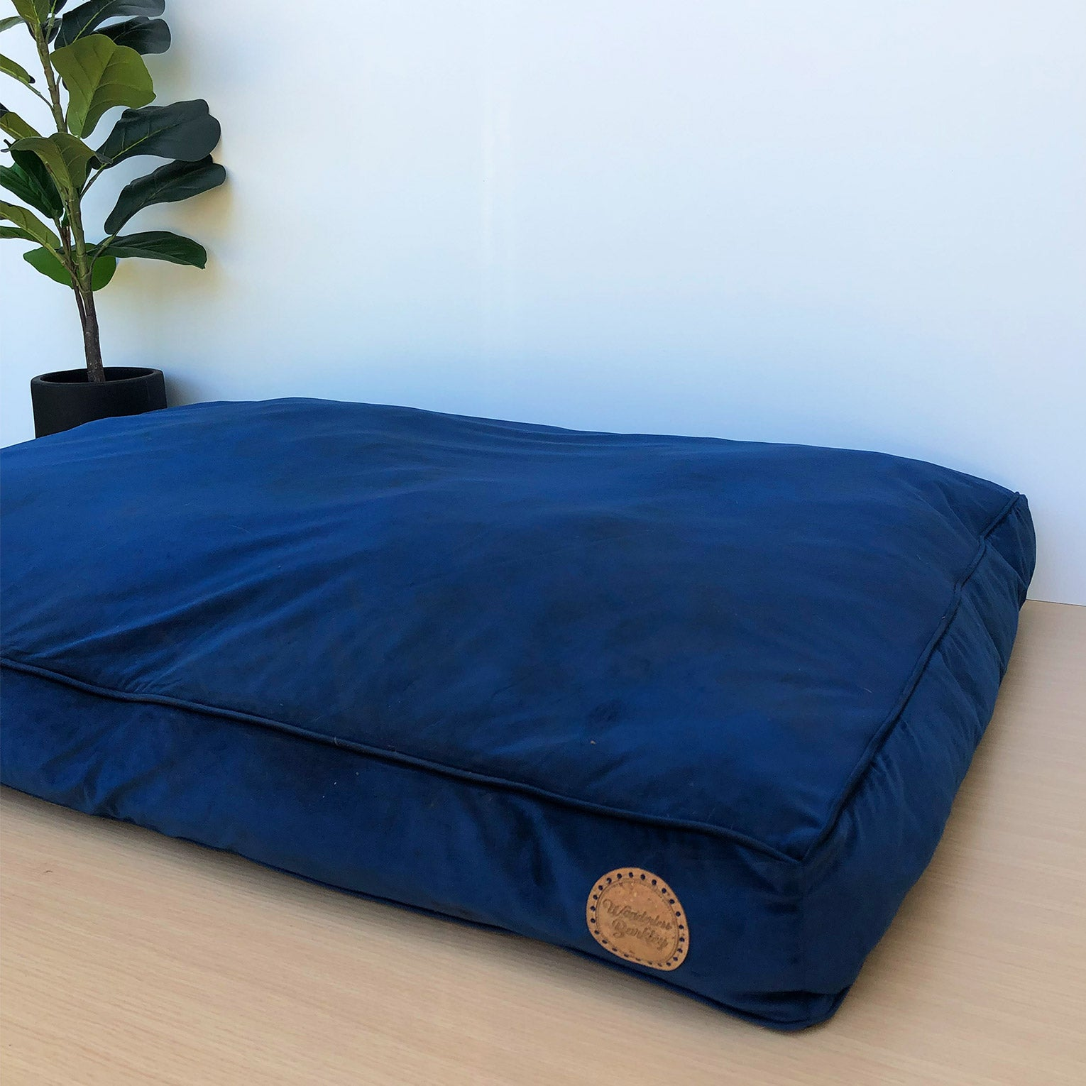 Seconds: Midnight - Velvet Spread Dog Bed (Medium)