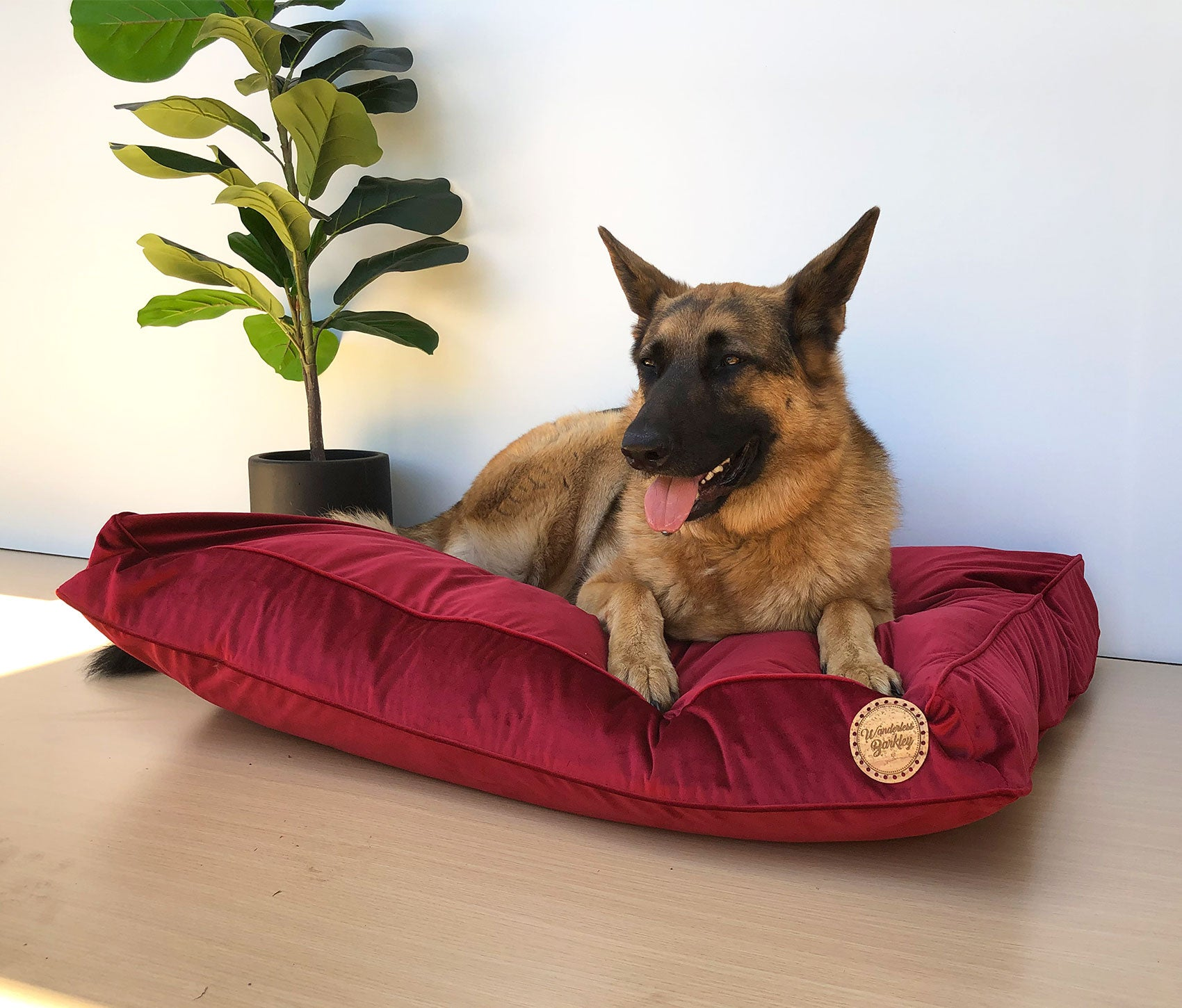 Scarlet - Velvet Spread Dog Bed (Cover Only)