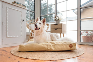 Turmeric Woven Dog Bed